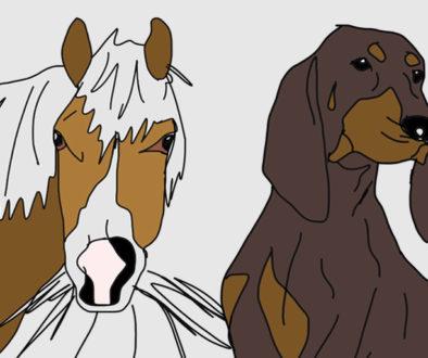 cavalli-e-segugi-bien