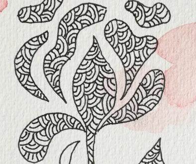 rosa-copertina